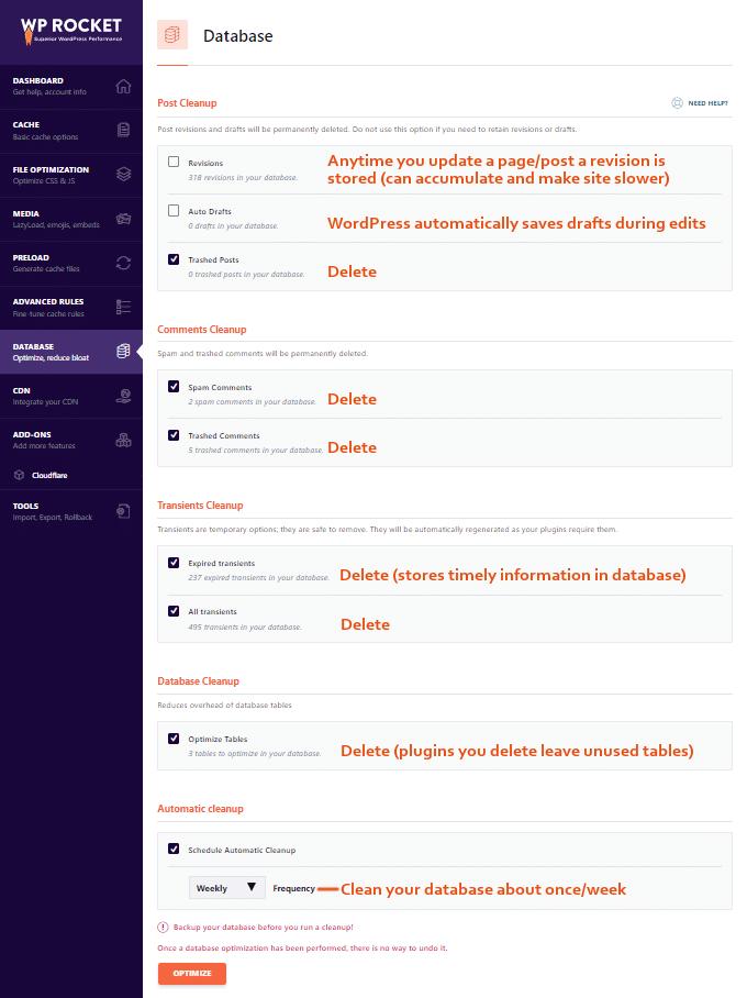 WP-Rocket-Database-Settings